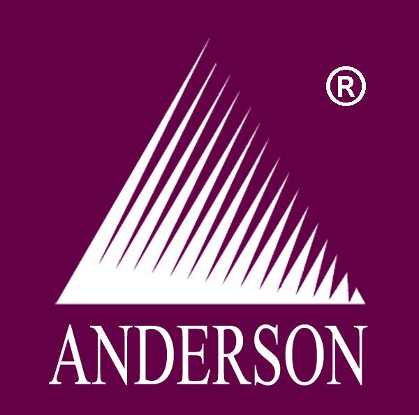 Anderson Christiano Wulff